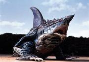 Geo Shark