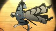 Shinjitsu Kano is killed