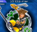 Sora Master Form Version