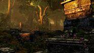 Jungle (5)