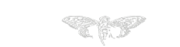 Wikia Cicada 3301 Logo