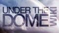 Thumbnail for version as of 23:57, September 7, 2013
