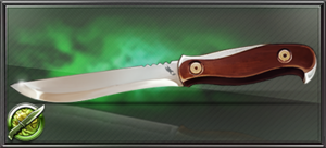 Item associates knife of street