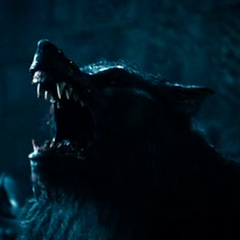 A Werewolf roaring in <i>Rise of the Lycans</i>.