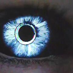 Eve's Hybrid eyes.