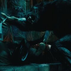 A Lycan attack inside Thomas's Coven.
