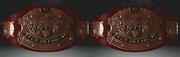 Xwf tag division championship