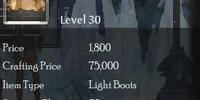 Assasin Boots