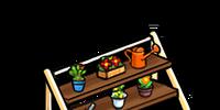 Casual Rack (Umber) (Furniture)