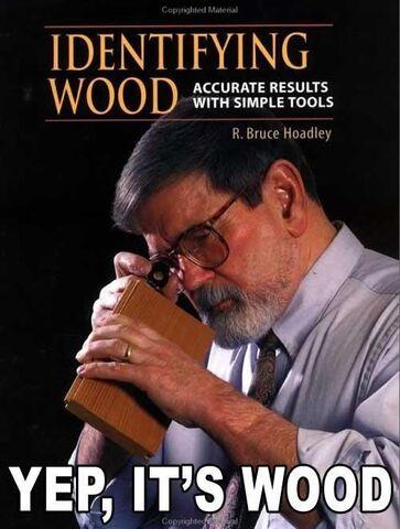 File:Identifying-wood-stupid-book.jpg