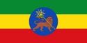 FDRE Flag 1.2