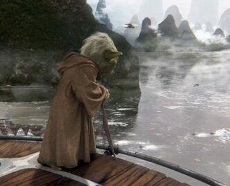 Yoda Kashyyyk