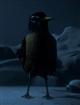 BirdTemplate