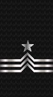 Sleeve black cpo