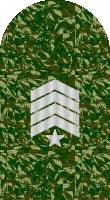Sleeve camo master gunnery sergeant