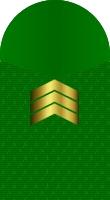 Sleeve marine staff sergeant