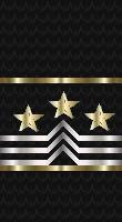 Sleeve black master cpo sf