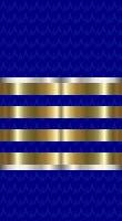 Sleeve blue fleet captain