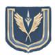 Lt gen profile