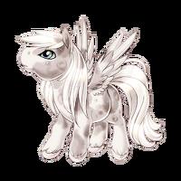 Moon Pegasus Baby