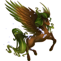 Evergreen Pegasus