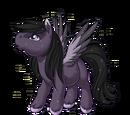 Misty Moon Pegasus