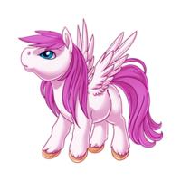 Heartbeat Pegasus Baby White