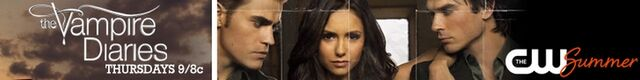 File:Banner-the-vampire-diaries-31368730-800-100.jpg