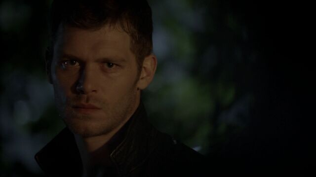File:Normal TheOriginals207-1444Klaus.jpeg