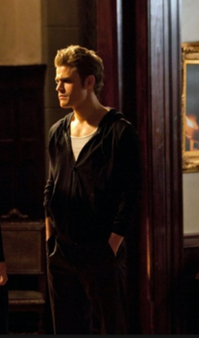 File:1x20 Stefan Salvatore Blood Brothers.png