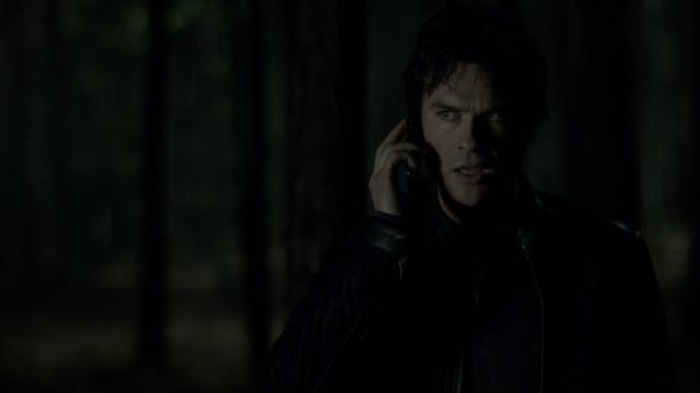 File:721-097-Damon~Bonnie.png