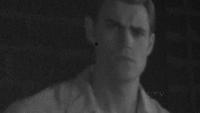 Stefan1953