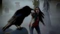 101-037-Elena-Crow.png