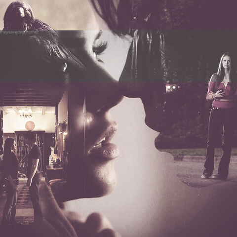 File:Delena-the-vampire-diaries-tv-show-36844706-500-5611.jpg