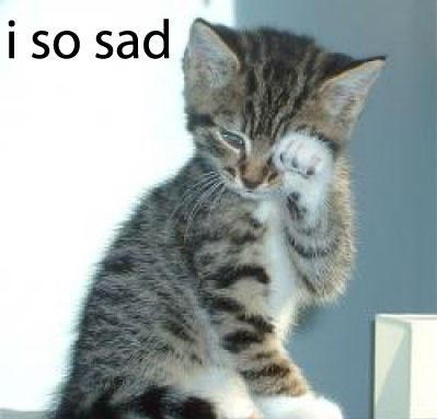 File:Cute-kitten-crying.jpg