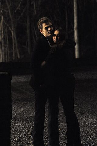 File:1x16-There-Goes-The-Neighborhood-stefan-and-elena-12340911-680-1024.jpg