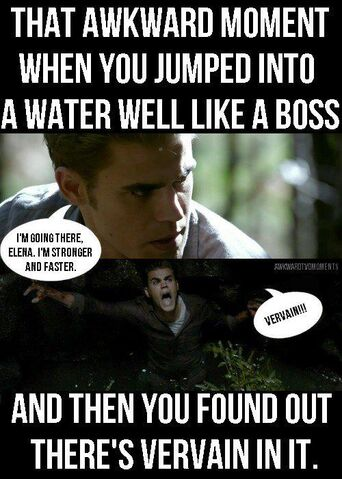 File:Funny-Funny-TVD-the-vampire-diaries-25458911-500-700.jpg