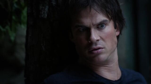File:7X07-105-Damon.jpg