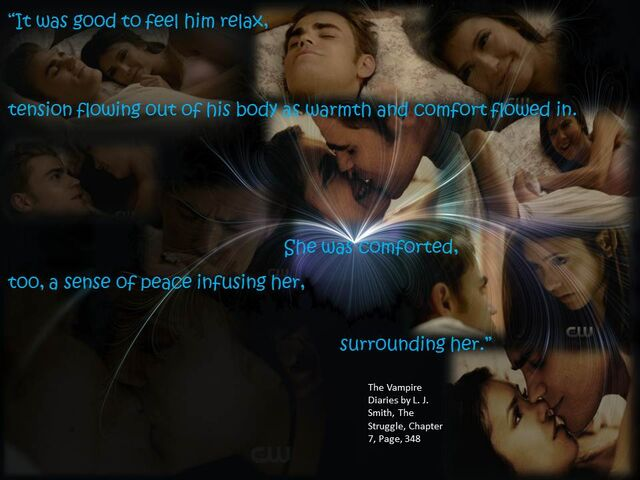 File:The Vampire diaries quotes from book plan b.jpg