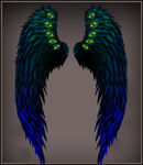 Peacock Wings canvas