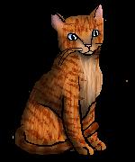 Jessie.Freecat