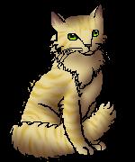 Ozzie.freecat