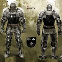 Темерский рыцарь