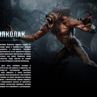 Описание чудовища (Ведьмак 3)