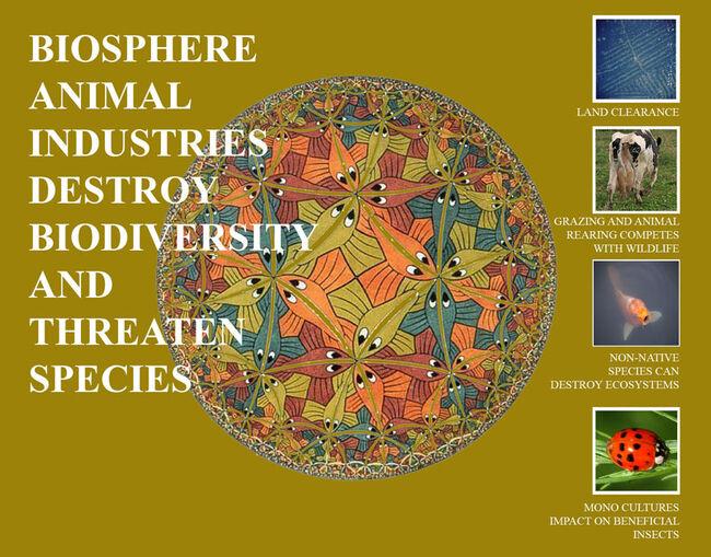 Vegan-Biosphere