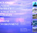 OCEAN: Animal Product Extraction damages the marine environment