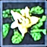 File:Grave Blossom icon.png