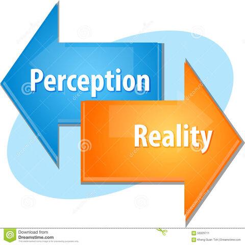 File:Realityvsperception.jpg