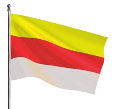 Wedig flag