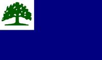 CT Proposed Flag luketheduke03 1